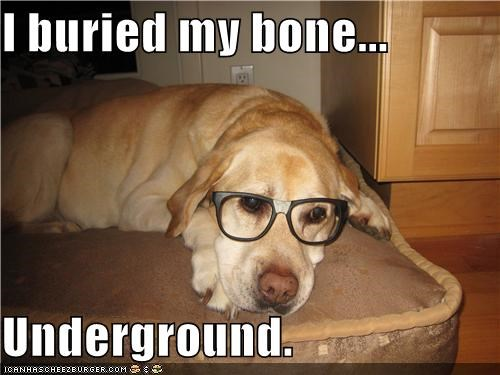 I buried my bone...  Underground.