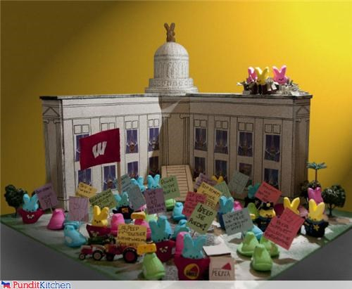 cute,easter,food,peeps,protests,wisconsin