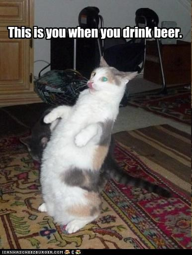 This is you when you drink beer.