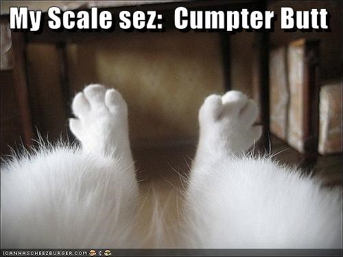 My Scale sez:  Cumpter Butt