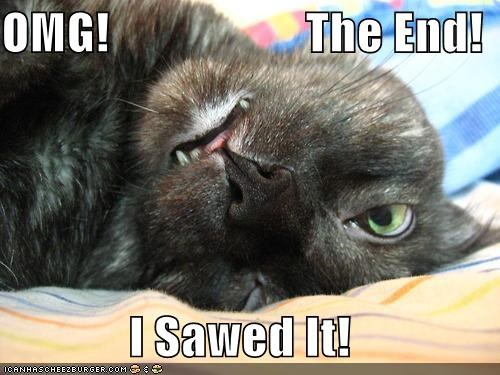 OMG!                    The End!  I Sawed It!