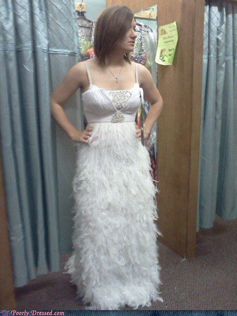 dr seuss,dress,feathers