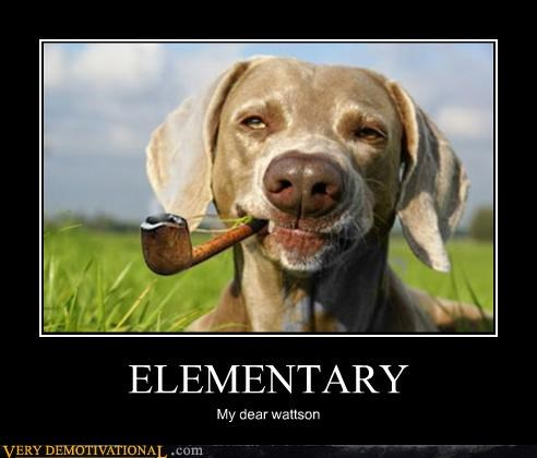 dogs,elementary,horrible show,whats-in-that-pipe