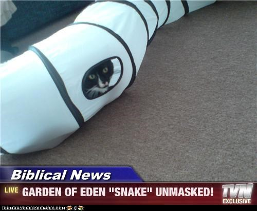 "Biblical News - GARDEN OF EDEN ""SNAKE"" UNMASKED!"