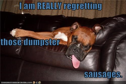 I am REALLY regretting those dumpster sausages.