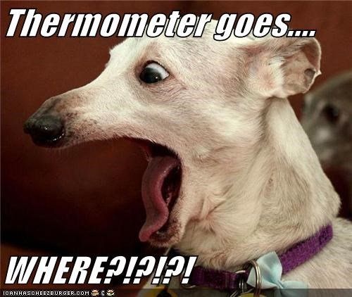 Thermometer goes....  WHERE?!?!?!