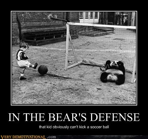 IN THE BEAR'S DEFENSE
