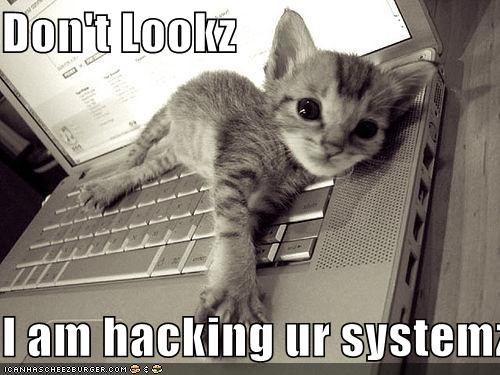 Don't Lookz  I am hacking ur systemz