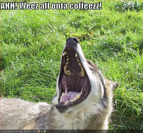 ahh,all,coffee,do not want,husky,out,Sad,shouting,upset