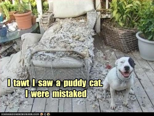 I  tawt  I  saw  a  puddy  cat.   I  were  mistaked