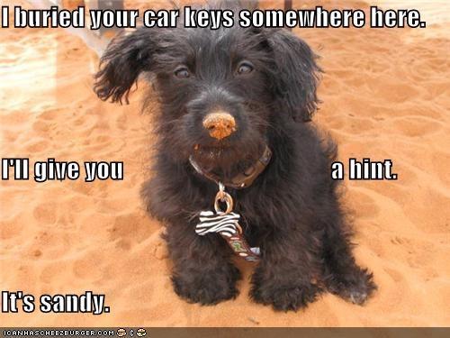beach,buried,car keys,hint,keys,sand,sandy,whatbreed