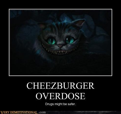 alice in wonderland,cheezburger,cheshire cat,drugs,overdose