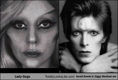 black and white,born this way,david bowie,lady gaga,musicians,ziggy stardust
