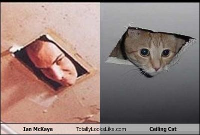 Ian McKaye Totally Looks Like Ceiling Cat