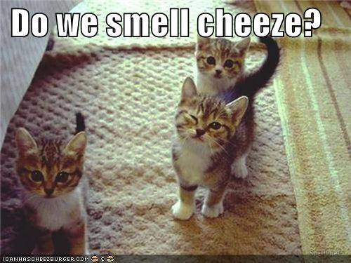 Do we smell cheeze?