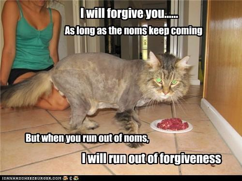 I will forgive you......