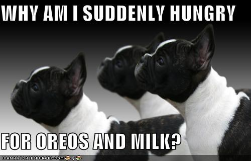 WHY AM I SUDDENLY HUNGRY  FOR OREOS AND MILK?