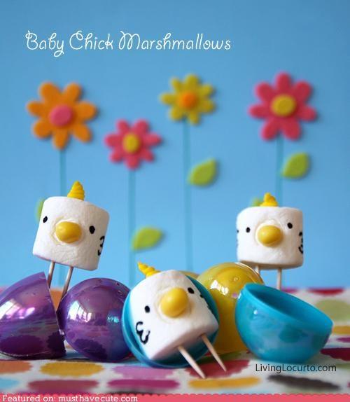 beaks,chicks,epicute,marshmallows