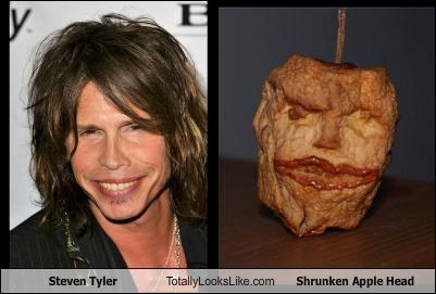 Steven Tyler Totally Looks Like Shrunken Apple Head