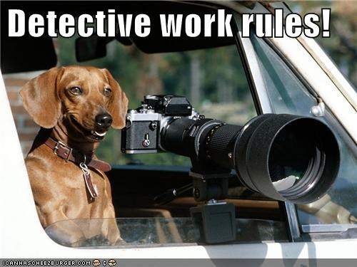 Detective work rules!