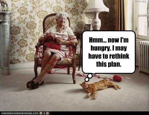 caption,captioned,cat,hmm,human,hungry,now,plan,rethink,thinking,tied up,trap,trapped,yarn