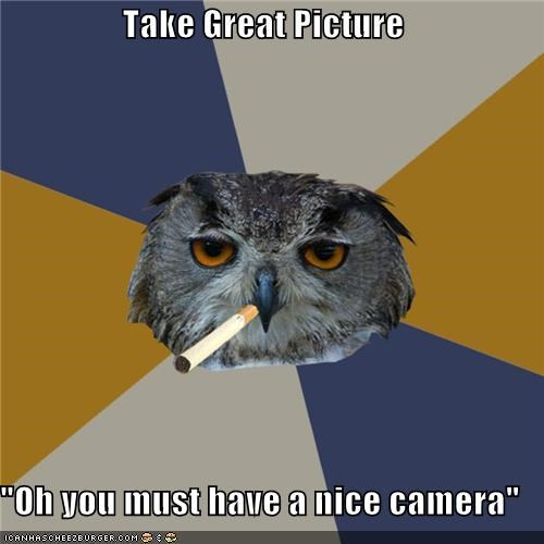 Art Student Owl: Great Photo