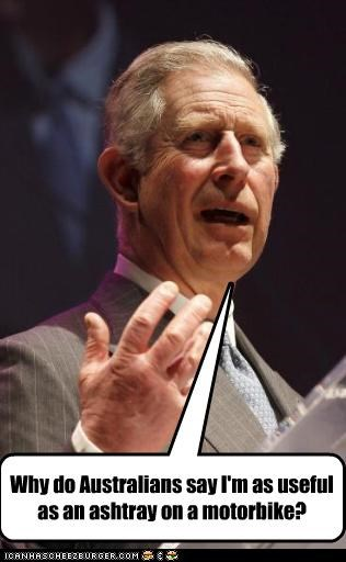Prince Charles as the next king?