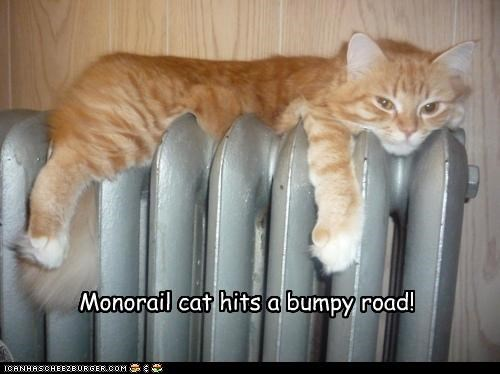Monorail cat hits a bumpy road!