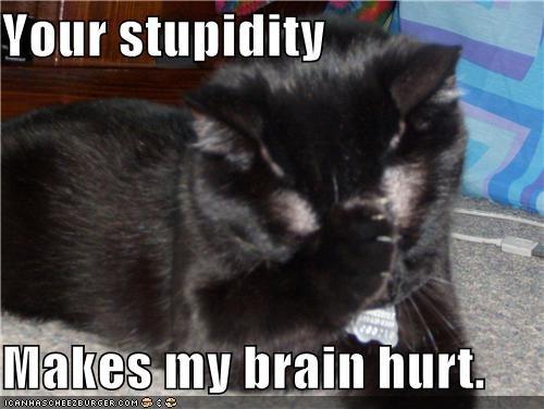 Your stupidity  Makes my brain hurt.