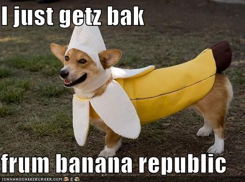 I just getz bak  frum banana republic