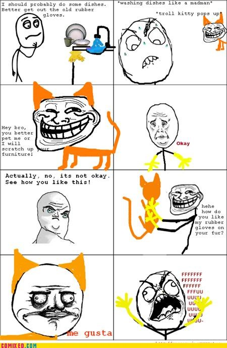 DAMN YOU TROLL KITTY!