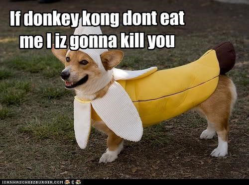 If donkey kong dont eat me I iz gonna kill you