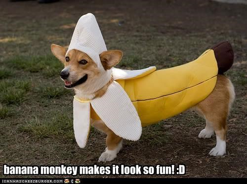 banana monkey makes it look so fun! :D