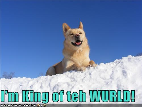 I'm King of teh WURLD!