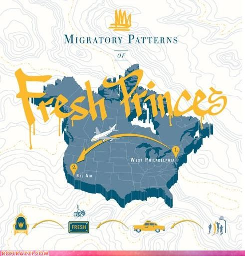 Migratory Patterns Of Fresh Princes