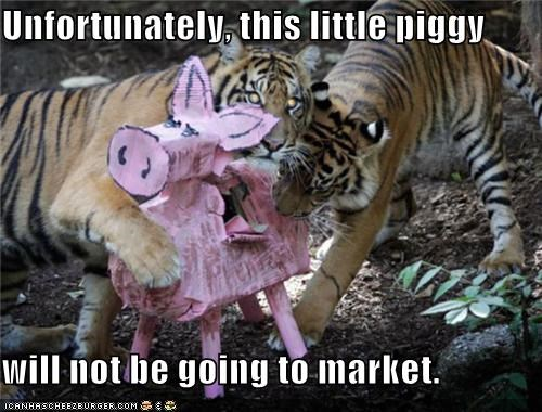 Unfortunately, this little piggy  will not be going to market.