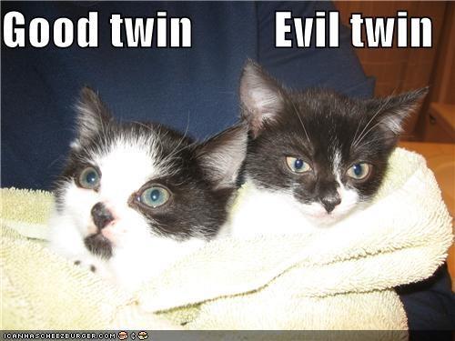Good twin         Evil twin
