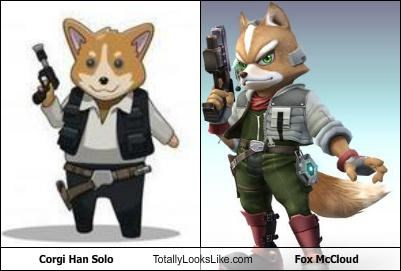 EDIT THIS:Corgi Han Solo Totally Looks Like Fox McCloud