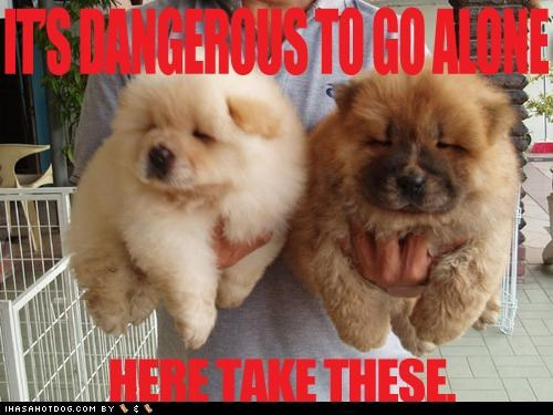 alone,chow,chow chow,dangerous,go,holding,its dangerous to go alone,meme,memedogs,puppies,puppy,take,these