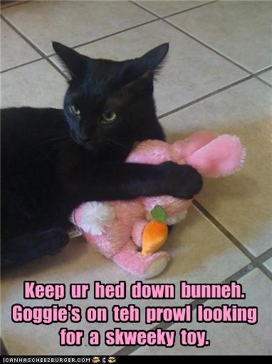 advice,bunny,caption,captioned,cat,dogs,looking,protecting,prowl,squeaky toy,stuffed animal,toy
