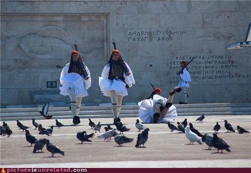 fall,pigeons,upskirt