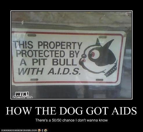 HOW THE DOG GOT AIDS
