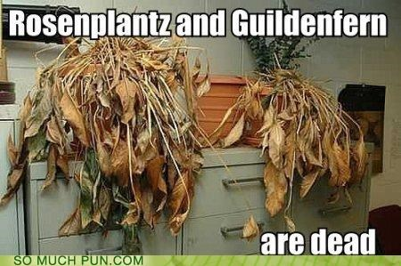 Rosenplantz and Guildenfern