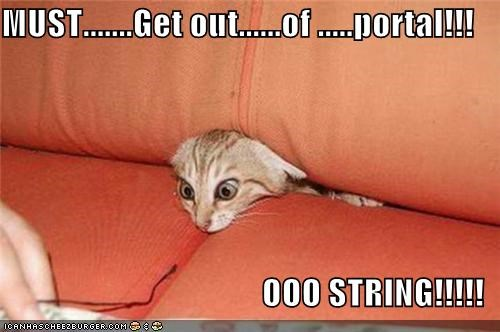 MUST.......Get out......of .....portal!!!                                        OOO STRING!!!!!