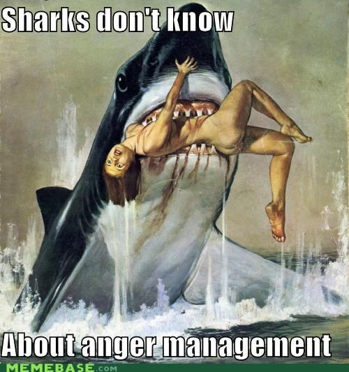 Them sharks will never learn ...
