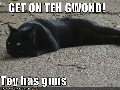 GET ON TEH GWOND!  Tey has guns