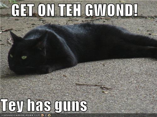 GET ON TEH GWOND!  Tey has guns