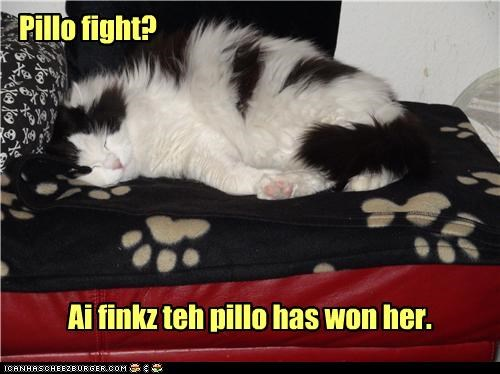Pillo Fight Day: Nap Attack