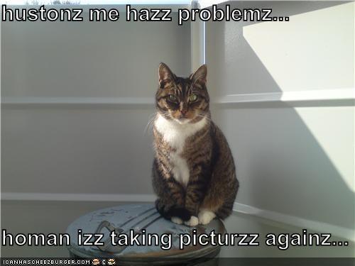 hustonz me hazz problemz...  homan izz taking picturzz againz...