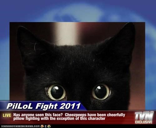 PilLoL Fight 2011 - Has anyone seen this face?  Cheezpeeps have been cheerfully pillow fighting with the exception of this character